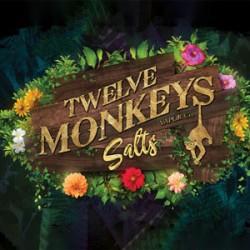 Twelve Monkeys Nic Salt